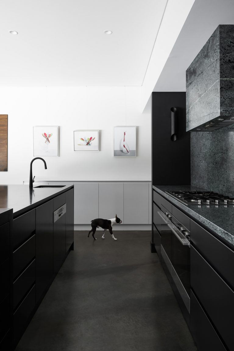 10-galley-kitchen-and-dog-urban-house-western-suburbs-architect-Robeson-Architects